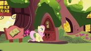 S01E01 Twilight zatrzaskuje drzwi przed Fluttershy