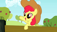 S02E14 Apple Bloom macha do siostry