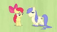 Too short stallion S02E17