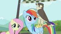 Fluttershy, Rainbow Dash and the falcon S2E07