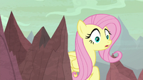 Fluttershy entering the hatching grounds S9E9