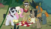 Fluttershy shares food with Caballeron's team S9E21