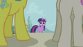 Lemon Hearts and Twinkleshine approach Twilight S5E12.png