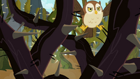 Owl can't see a way through the vines S2E07