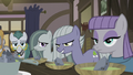 Pie sisters staring at Applejack S5E20.png