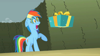 Rainbow Dash's wing gift S2E01