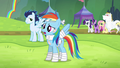 """Rainbow Dash """"I feel great because"""" S4E10.png"""