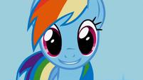 Rainbow Dash big smile S1E03