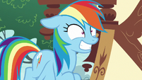 Rainbow Dash grinning maniacally S8E20