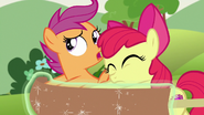 S07E07 Scootaloo i Apple Bloom