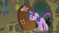Twilight explains infestation to Zecora S1E10
