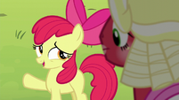 Apple Bloom -there'll be more Sisterhooves Socials- S5E17