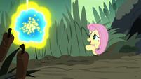 Fluttershy -flash bees can get pretty aggressive- S7E25