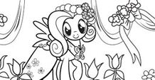Fluttershy color-in image