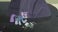 Maud Pie continues mining near Our Town S7E4
