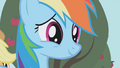 "Rainbow Dash ""Living the dream"" S01E03.png"