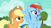 "Rainbow Dash ""or a whole lot of it"" S6E18"
