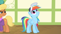 "Rainbow Dash ""the single most important thing"" S4E05"