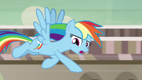 Rainbow Dash -that was just one angry pony- S7E18