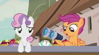 Scootaloo -shouldn't have taken the binoculars- S7E8