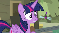 Twilight Sparkle looking at a dragonfly S7E20