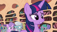 Twilight looking disappointed S4E15