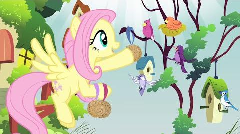 Ukrainian My Little Pony Music in the Treetops HD