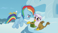 Young Rainbow extends a hoof to Gilda S5E8
