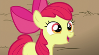 Apple Bloom compliments AJ as being funny S5E17