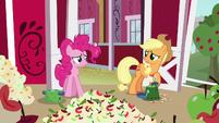 Applejack --sorry, Pinkie-- S5E24