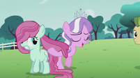 Diamond Tiara strokes a filly's mane S5E18