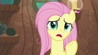 "Fluttershy ""he's so impatient"" S9E18"
