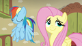 Fluttershy playfully rolling her eyes; Dash shaking her head S6E11.png