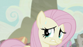 Fluttershy sweating S5E2.png