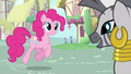 Pinkie Pie And Zecora S02E18.png