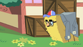Pinkie Pie hides in a hay bale S1E25.png