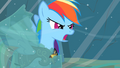 "Rainbow Dash ""Earth ponies are numbskulls!"" S2E11.png"