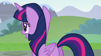 Twilight asking --some other detail-- S5E22