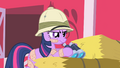 Twilight with bandages on her bee stings S1E15.png