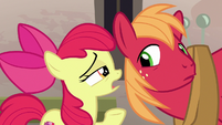 Apple Bloom asking Big Mac if he has a crush S7E8