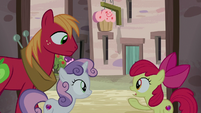 Apple Bloom explains the plan to Big McIntosh S7E8