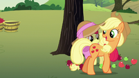 Applejack -you know about that kind o' stuff- S7E9