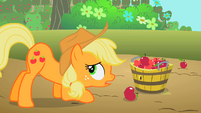 Applejack putting apples into a bucket S2E13