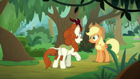 "Autumn Blaze ""have you seen"" S8E23"