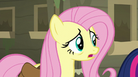 Fluttershy -maybe there's somepony we can ask- S7E20