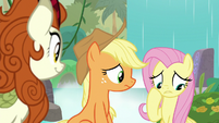 Fluttershy imagining life without animals S8E23