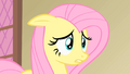 Fluttershy oh my S01E22.png