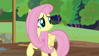 Fluttershy sees Dr. Fauna and animals S7E5