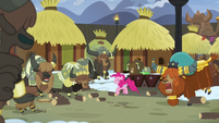 Pinkie, Rutherford, and yaks stomping vigorously S7E11