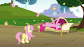 Pinkie Pie 'Thanks for letting me rest in your butterfly grove' S3E3.png
